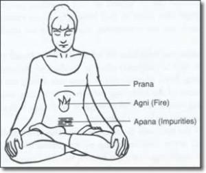 pranayama-exercises